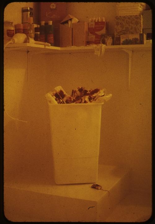 Menstruation bathroom